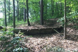 Trail u Jerycha trate